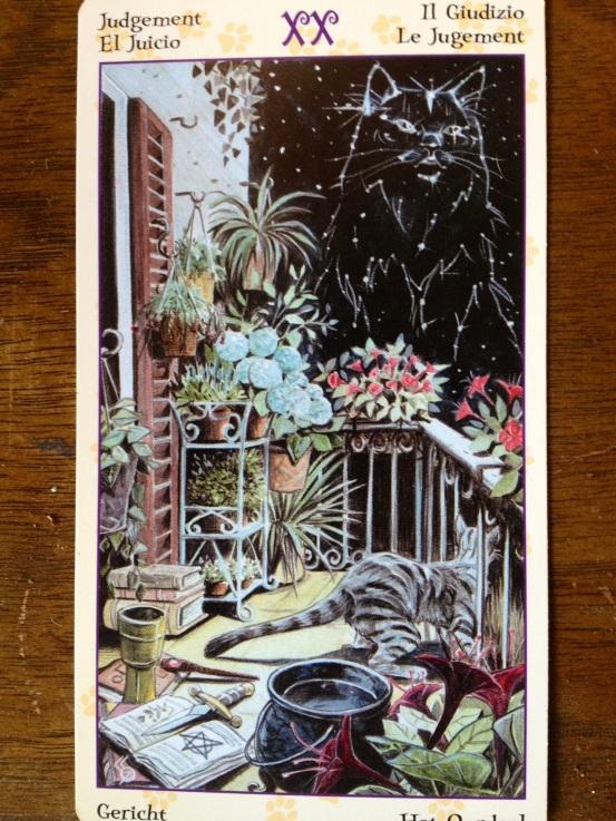 Judgement Cat Tarot card